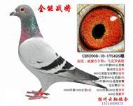 博翔495(已�D�)