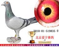 上海肖氏父子穆利门