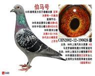 伯�R�--昊方百�f冠�190626