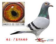 73超级双冠军九奖王