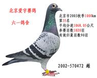北京市2003秋季1000km35名