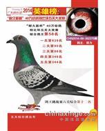 """哈市广利俱乐部14年秋""""五关""""综合58名"""