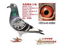 北京百鸽园联盟杯三关鸽王121名