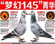 """�n白�T士王牌""""�艋�145""""�艋媒M合(四)"""