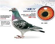 2014年北京惠翔8500棚决赛74