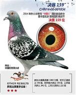 惠翔中国红大棚决赛159名(已售)