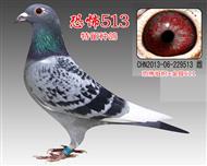 恐怖513