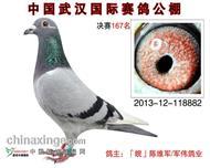 2013年秋武汉国际公棚决赛167名