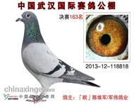 2013年秋武汉国际公棚决赛163名