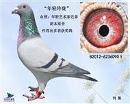 胡本原舍-年轻090