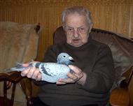詹森老人手捧此鸽照片