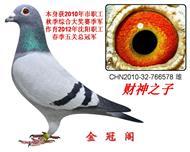 财神578(冠军之父)