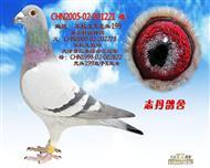 CHN2005-02-001221 雌