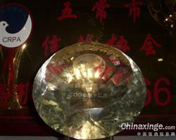 中国信鸽协会VIP会员巡航鸽舍
