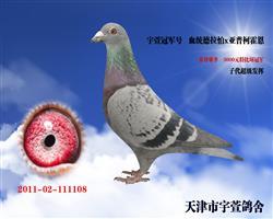宇萱冠军号 以赠开封