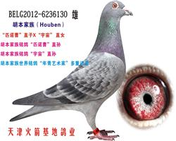 胡本家族-4