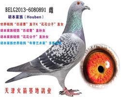 胡本家族-8