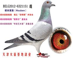 胡本家族-17