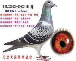 胡本家族-20