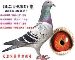 胡本家族-23