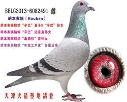 胡本家族-25
