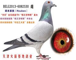 胡本家族-29