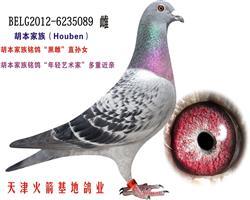 胡本家族-34