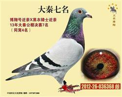 『灰军团-大秦七名』、仅供欣赏