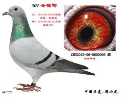 501直女066