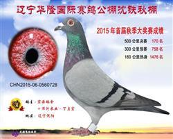 华隆沈铁公棚决赛170名已售出