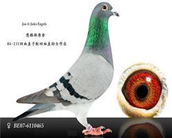 """""""231号""""直子 x """"231号""""直孙女"""