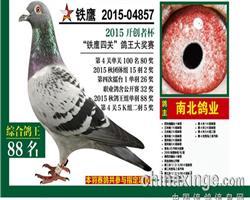 �F��四�P��王88名