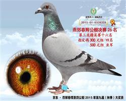 2015年决赛26名(荣获奖金十万余元)