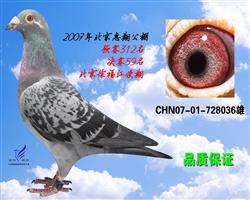 北京惠翔决赛59名