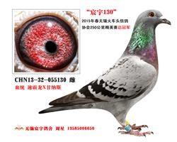 宸宇130(已售)