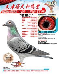 【收银员】波品纳3876羽季军
