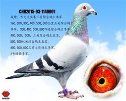 万元组三关综合季军