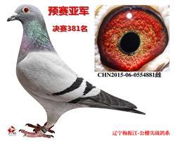 辽宁沈铁华隆预赛亚军 团体9名之一
