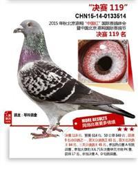 15年惠翔中国红国际赛鸽峰会决赛119名