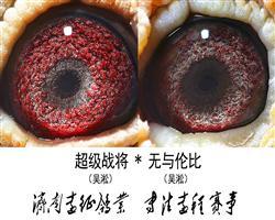 吴淞超级配对眼睛