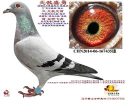 无敌盛勇-辽宁忠盛决赛5名(单飞归巢)