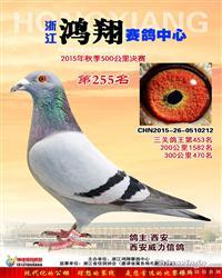 浙江鸿翔公棚决赛255名(已售)