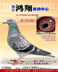 浙江鸿翔公棚决赛380名(已售)