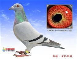 祺阳牧业俱乐部决赛348位