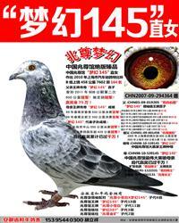 苍白骑士王牌梦幻145直女【兆尊梦幻】