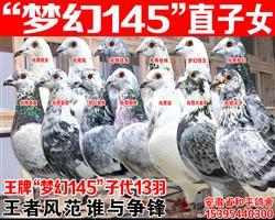 """兆尊馆苍白骑士王牌""""梦幻145""""子女"""