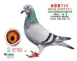 日本���-�川势山系715