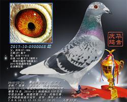 2015南通市崇川区王者杯 区县联赛第五