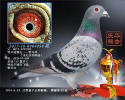 2016江苏省千公里联赛南通市第23名