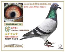 四川鹏程决赛248名(已售)